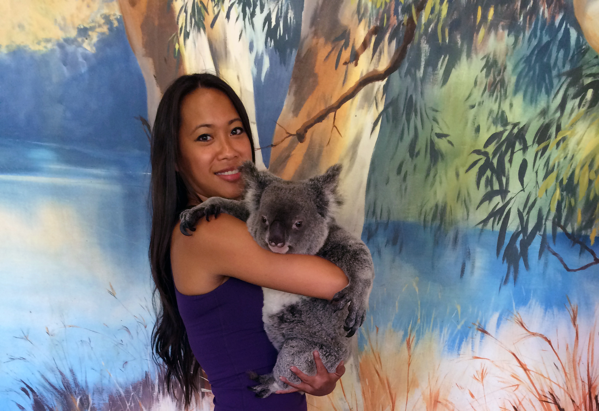 With Tilly the Koala in the Kuranda Rainforest