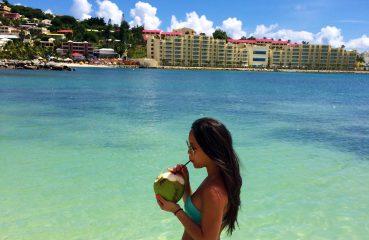 Coconut st Maarten