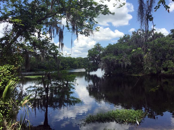 Alternative Orlando - Blue Spring State Park