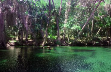Alternative Orlando - Blue Spring State Park