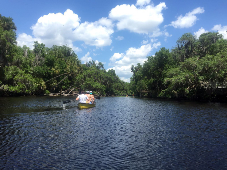 Canoeing down the St. Johns River