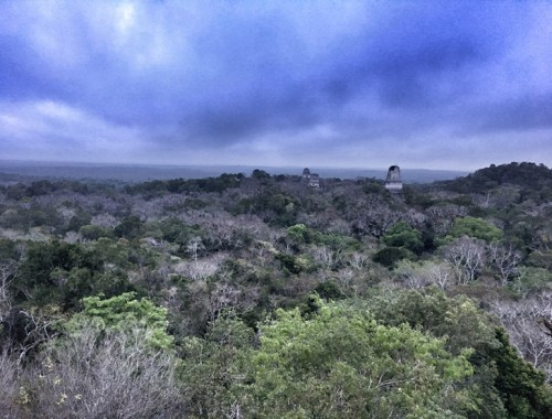Tikal from Temple IV at Sunrise