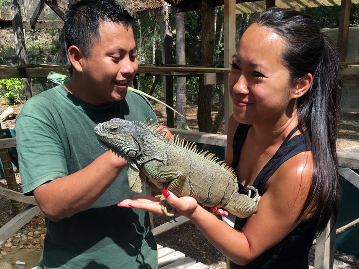 Holding the iguanas