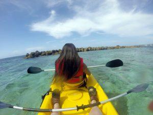 Dolphin Cove Kayak
