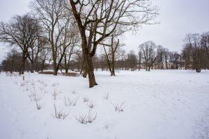 Mon Repos Tallinn Estonia