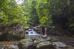 Paradise at Oxygen Jungle Villas